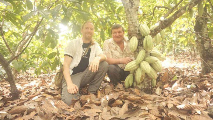 chocolate tree colombia huila 16013
