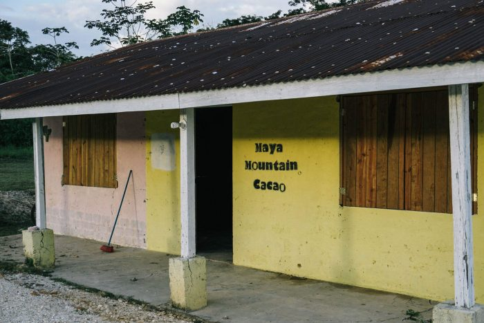 dick taylor belize toledo 72 maya mountain cacao