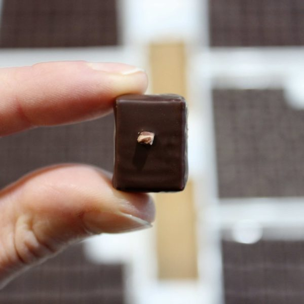 hilde devolder chocolatier cacaonibs