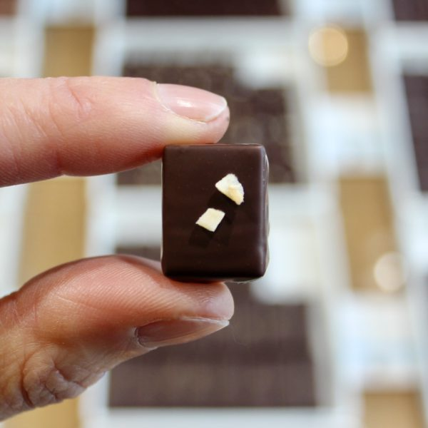 hilde devolder chocolatier costa rico with coconut