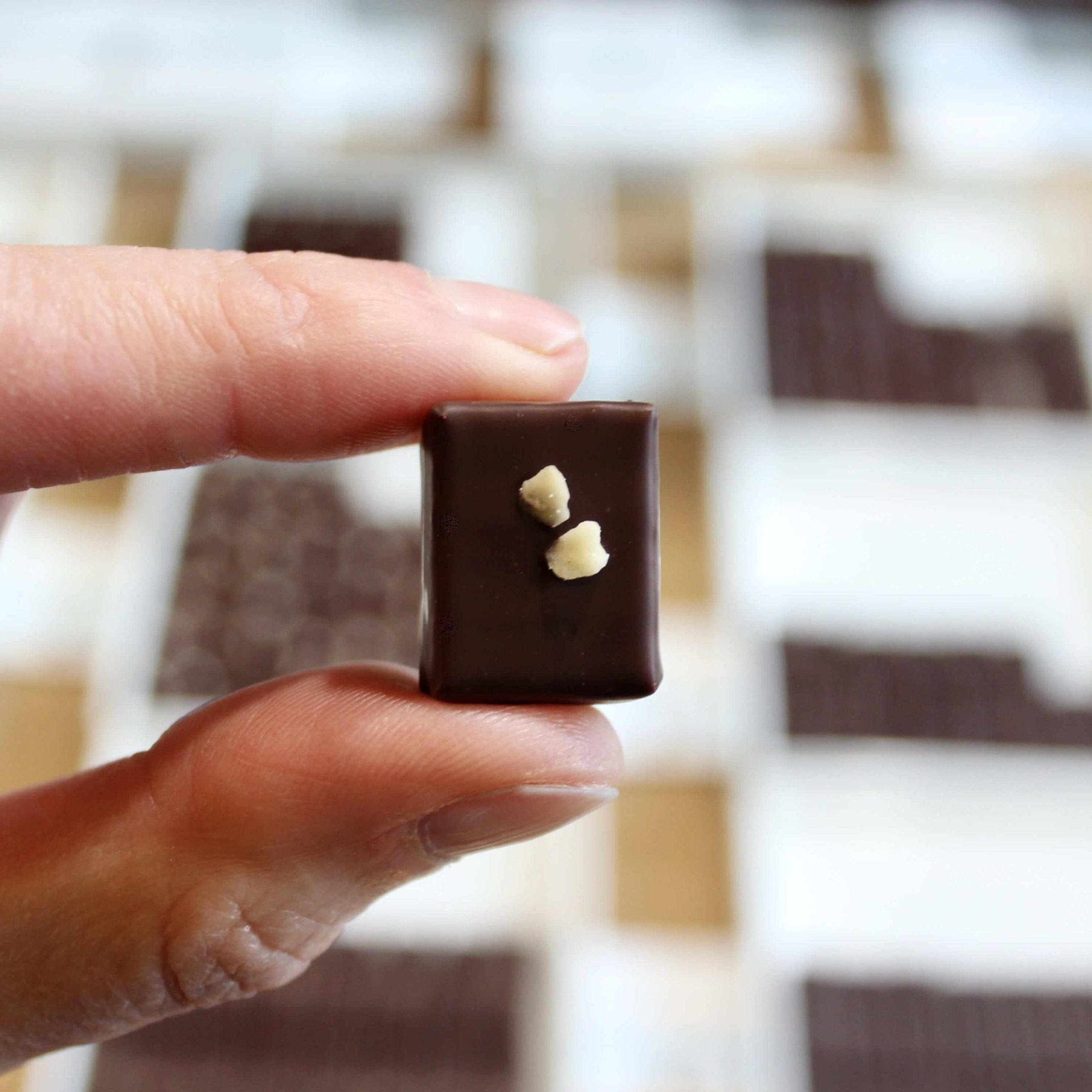 hilde devolder chocolatier hazelnut dark