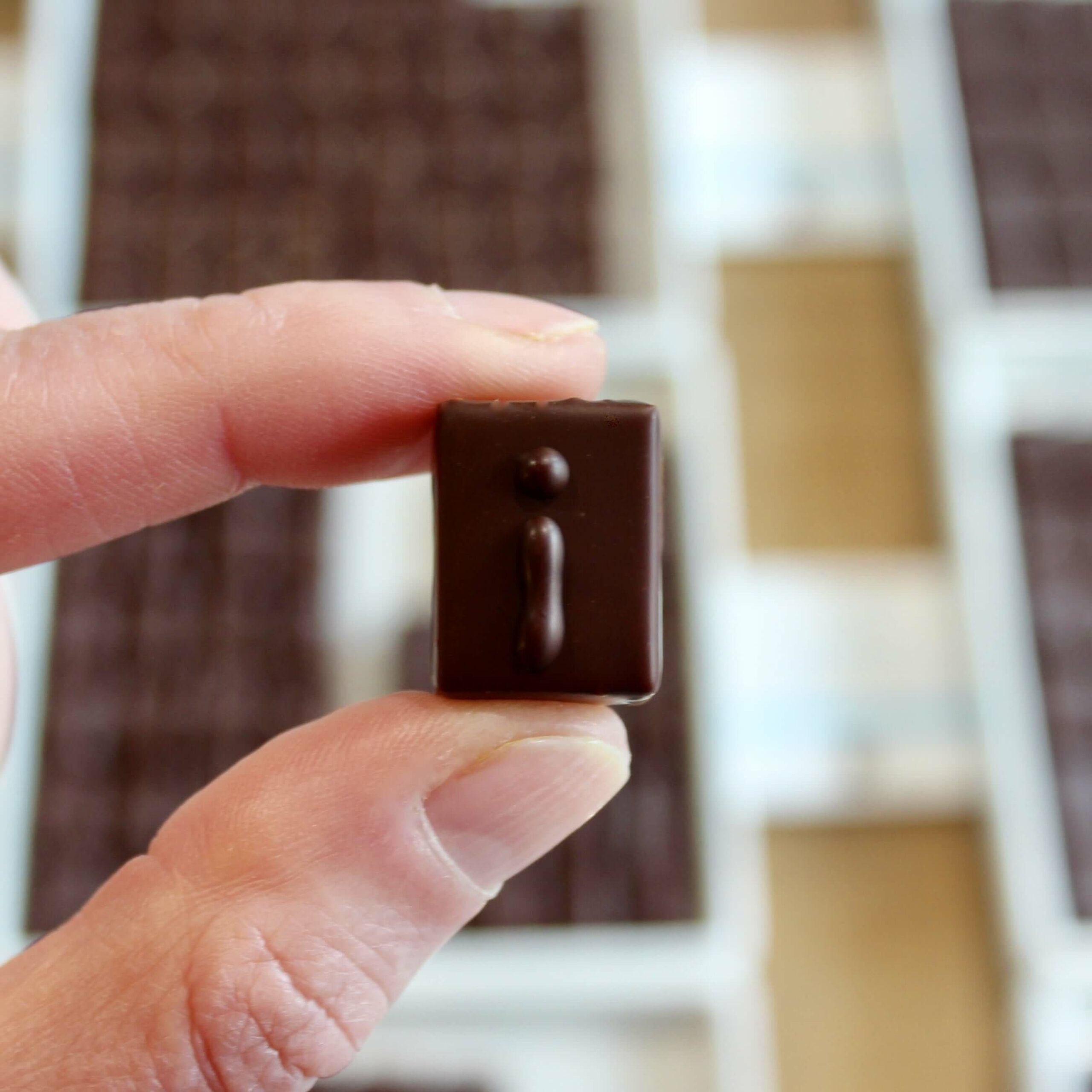 hilde devolder chocolatier cacao india 70